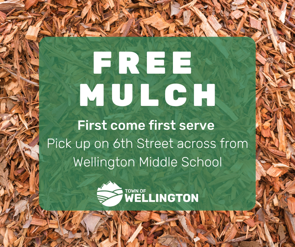 Free Mulch is available off of 6th street while supply lasts